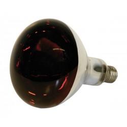 Rotlicht Birne 150 W